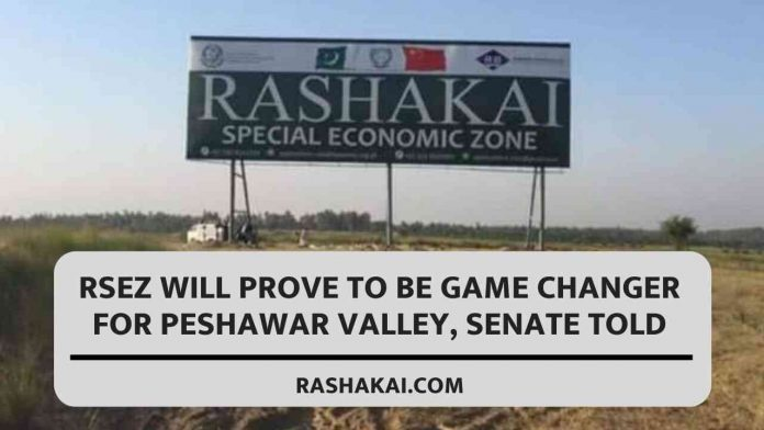 RSEZ will prove to be game changer for Peshawar valley, Senate told 1